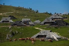 斯洛文尼亞 臨時居留許可 — 從事研究和高等教育工作